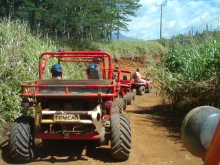 "ATVing on Kauai - ""The Garden Island"""