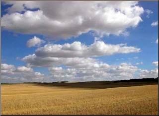 clouds_field