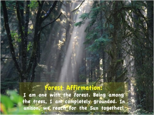 I Am One with the Forest Affirmation