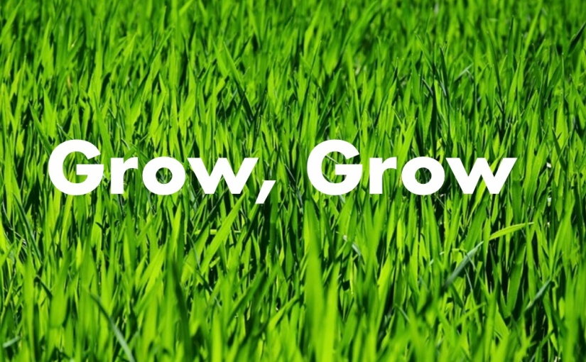 Grow Grow – Day 196 of 365 Days to a Better You