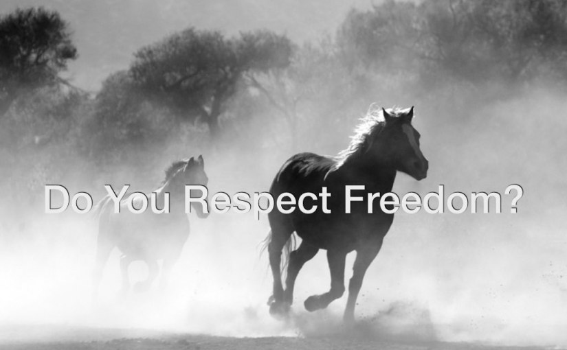 Do You Respect Freedom? – Day 189 of 365 Days to a Better You