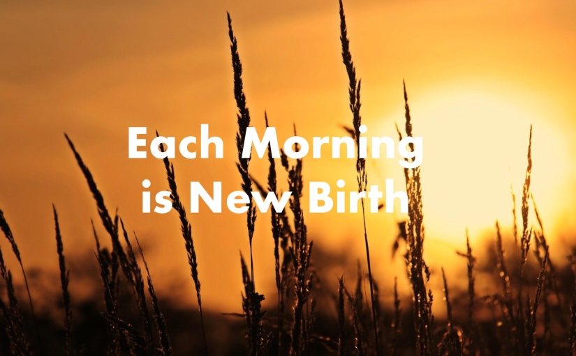 Each Morning is New Birth – Day 205 of 365 Days to a Better You