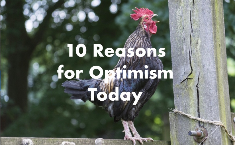 10 Reasons for Optimism Today – Day 207 of 365 Days to a Better You