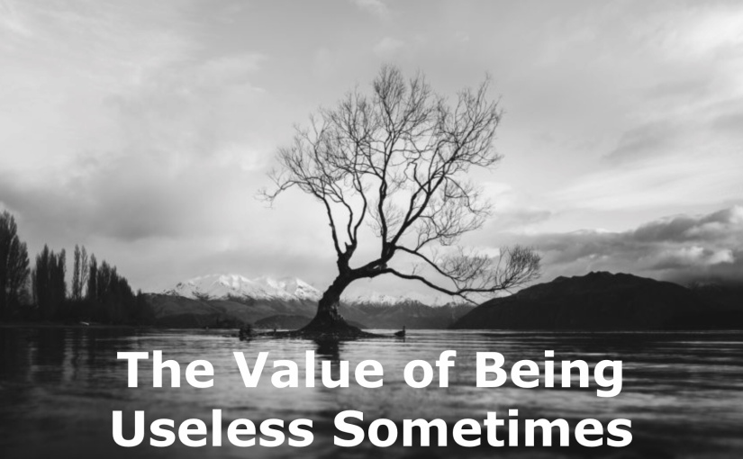 The Value of Being Useless Sometimes – Day 228 of 365 Days to a BetterYou