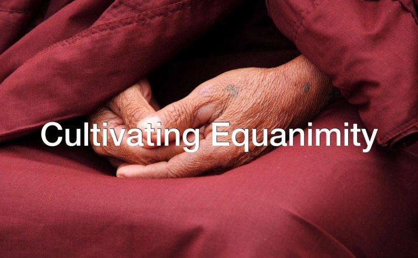 Cultivating Equanimity – Day 264 of 365 Days to a BetterYou