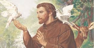 Happy St. Francis of Assisi Day
