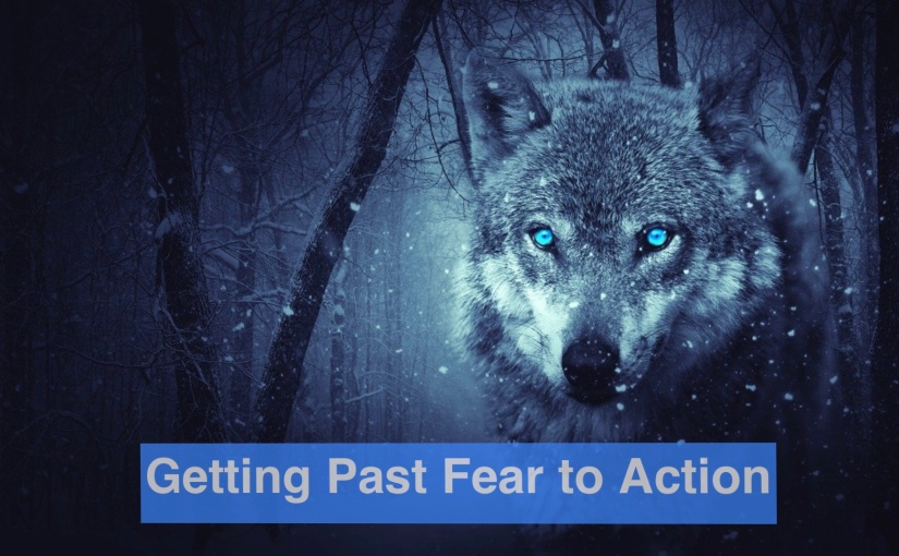 Getting Past Fear to Action – Day 285 of 365 Days to a BetterYou