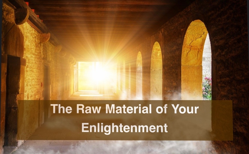 The Raw Material of Your Enlightenment – Day 316 of 365 Days to a Better You