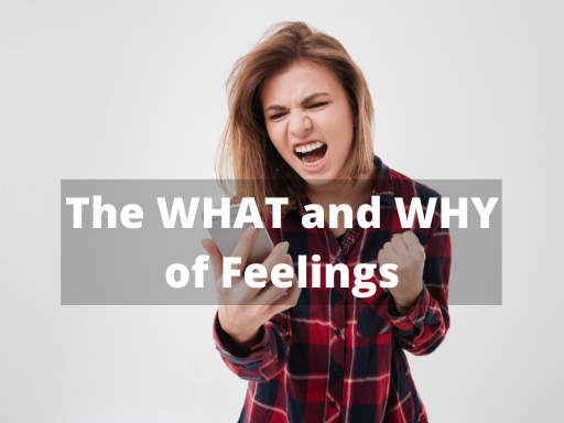 The WHAT and WHY of Feelings